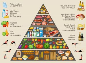 The food pyramid of correct nutrition