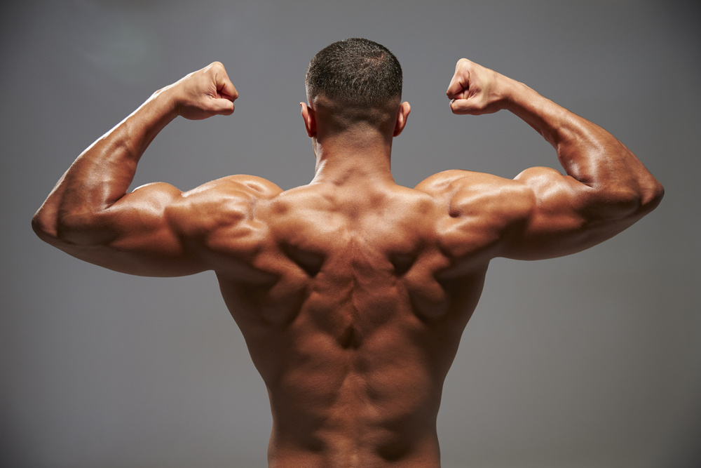 8 Things That Can Not Be Tolerated During The Back Muscles Training